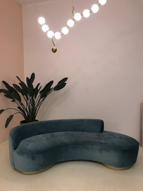 Foto d'estoc gratuïta de antic, cadira, clareja, confort