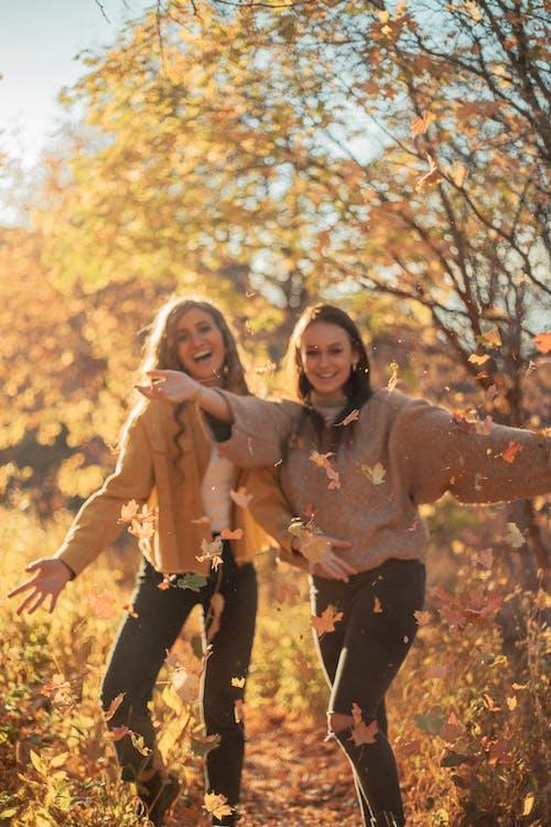 Photos gratuites de affection, amour, amusement, arbre