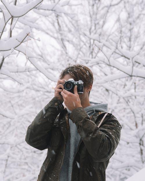가을, 감기, 겨울, 공원의 무료 스톡 사진
