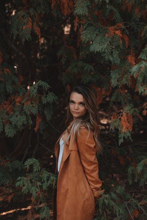 가운, 가을, 겉옷, 겨울의 무료 스톡 사진