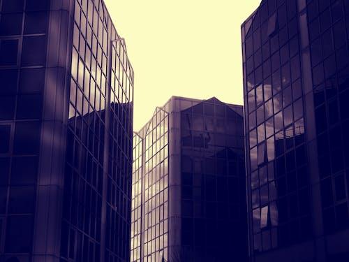 ガラス, ガラスアイテム, ガラスパネル, ガラス窓の無料の写真素材