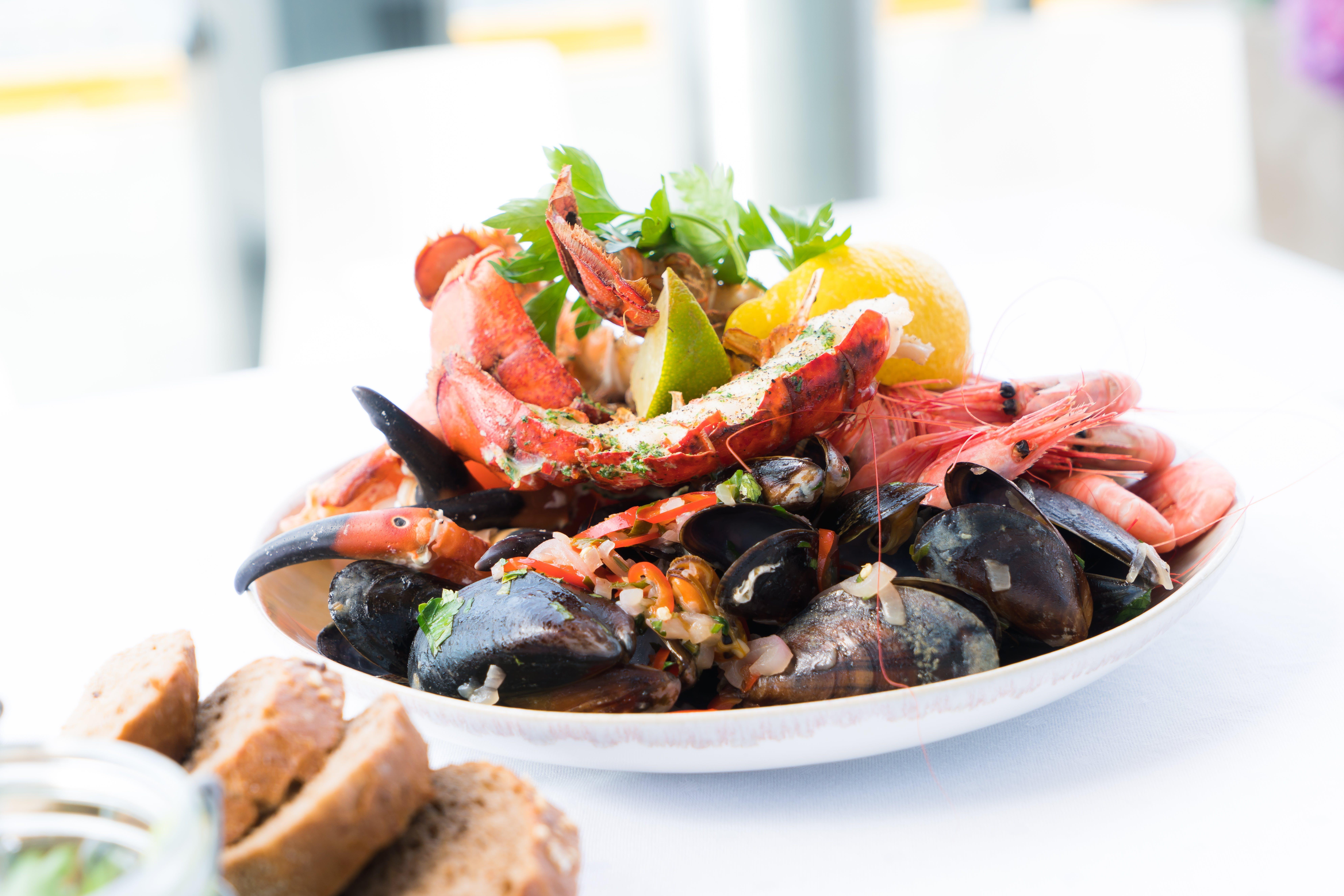 appetizer, crab, cuisine