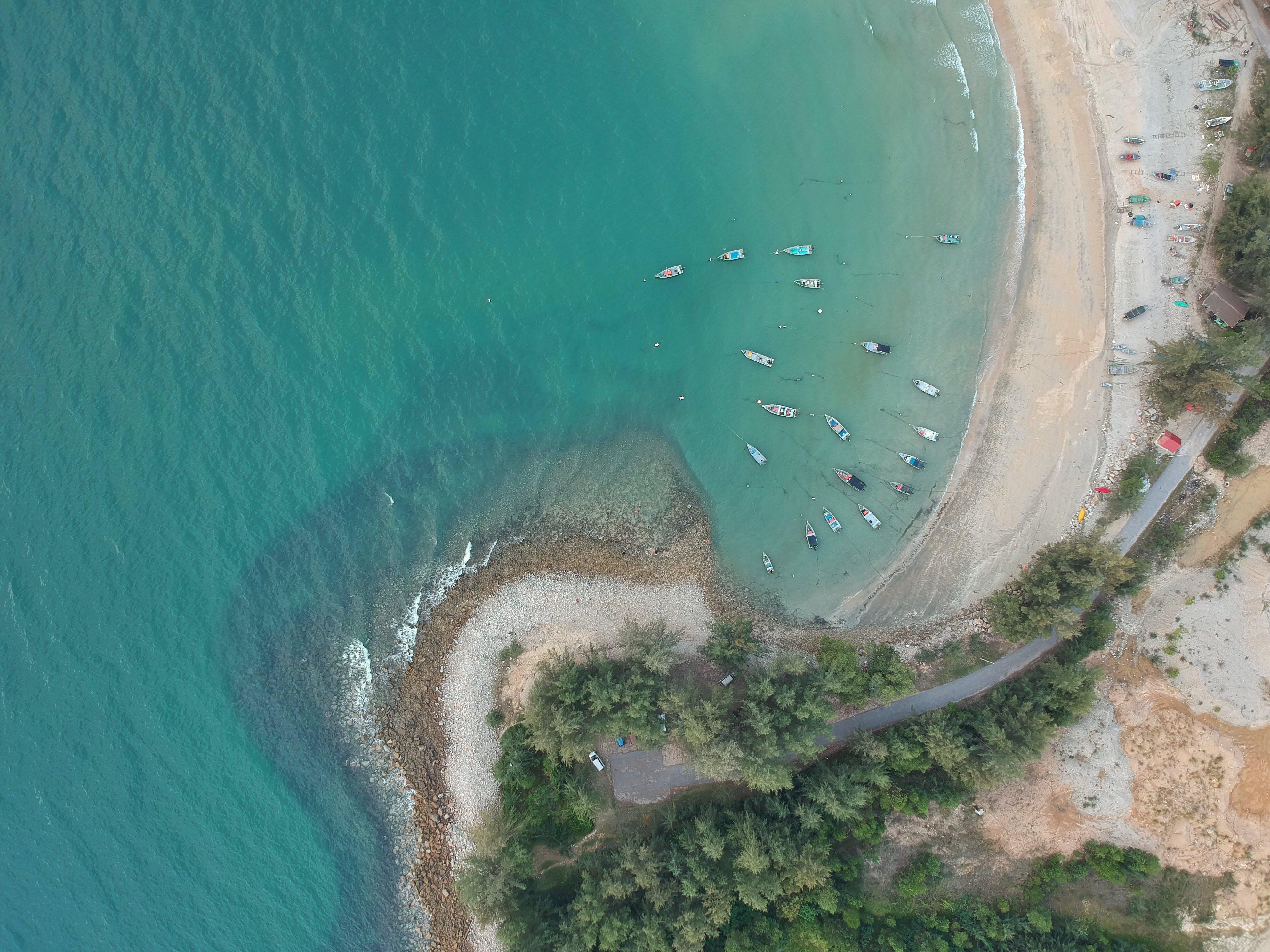 Foto d'estoc gratuïta de aigua, arbres, barca, busseig