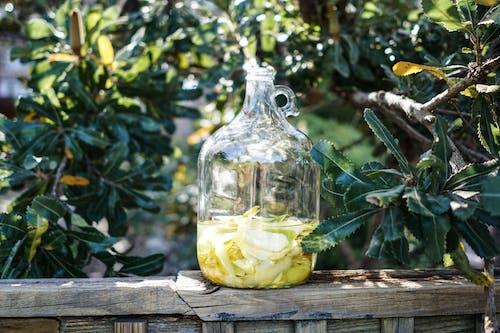 Free stock photo of lemon, limoncello