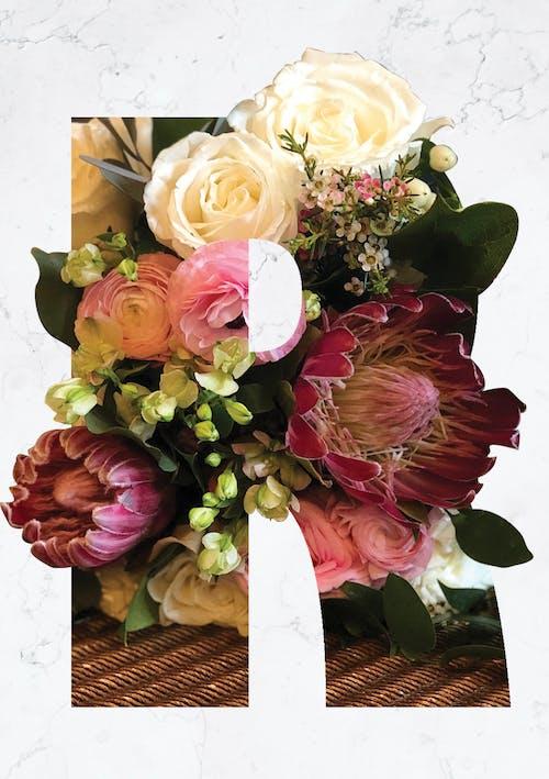Gratis arkivbilde med blomster i et brev