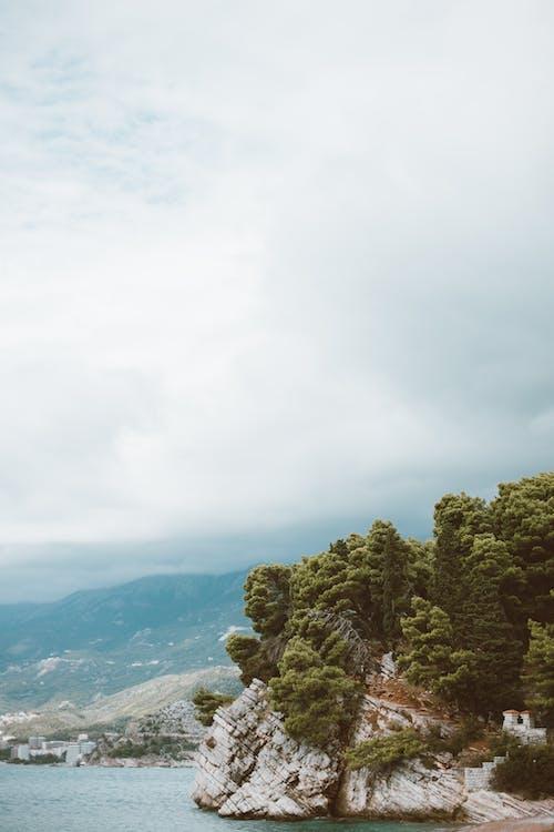 Δωρεάν στοκ φωτογραφιών με βουνό, γκρεμός, δέντρα