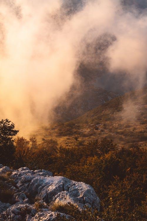 Δωρεάν στοκ φωτογραφιών με βουνό, κατακόρυφη λήψη, ομιχλώδης