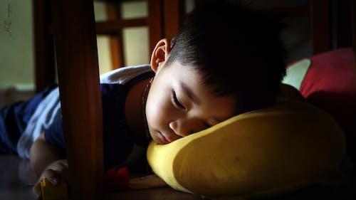 Free stock photo of Sleep under table