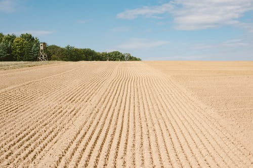 Agricultural area with ploughed field for sowing seeds