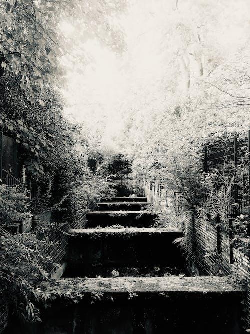 Free stock photo of glasgow, old, railway
