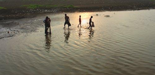 Free stock photo of beach sunset, catching fish, fishermen