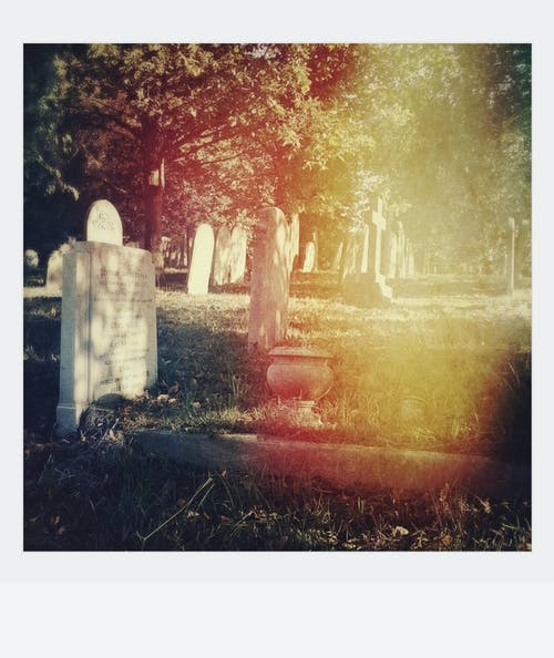 Kostnadsfri bild av begravning, dimma, falla, färg