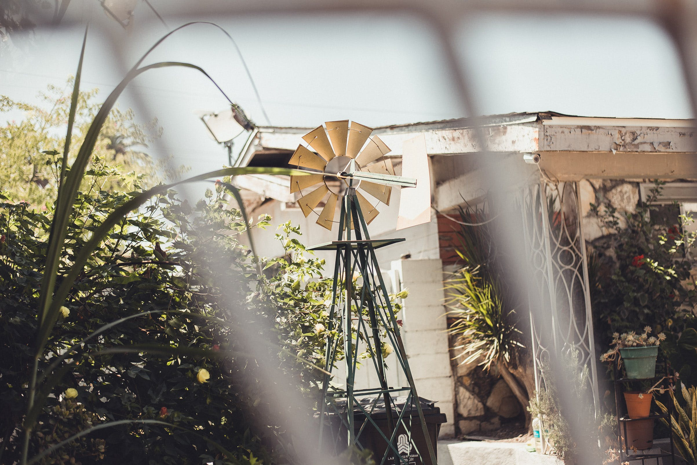 Gratis stockfoto met bloemen, buitenkant huis, eigen tuin, fabrieken