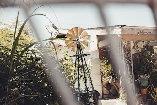 原本, 家庭花園, 岩石, 房屋外觀 的 免費圖庫相片