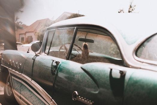 Free stock photo of car, vehicle, vintage, luxury