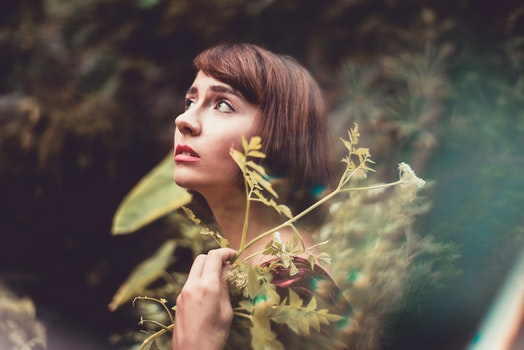 Free stock photo of person, woman, girl, forest