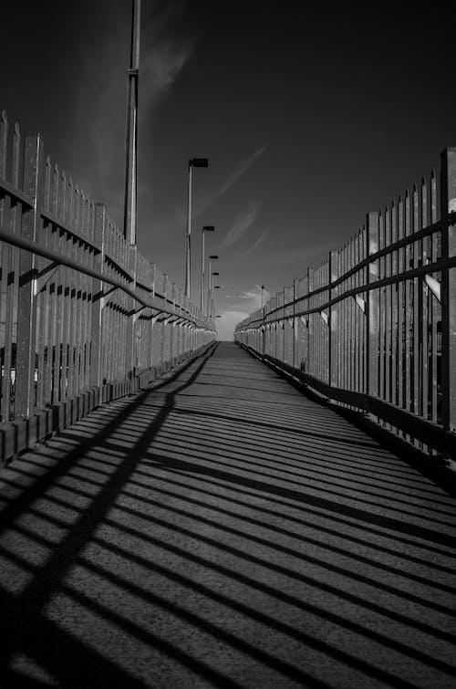 Kostnadsfri bild av bro, väg