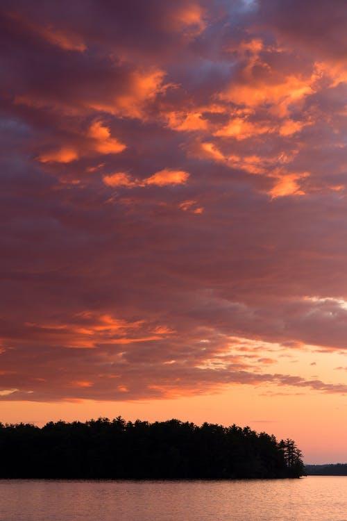 Kostenloses Stock Foto zu bäume, dämmerung, himmel, hinterleuchtet