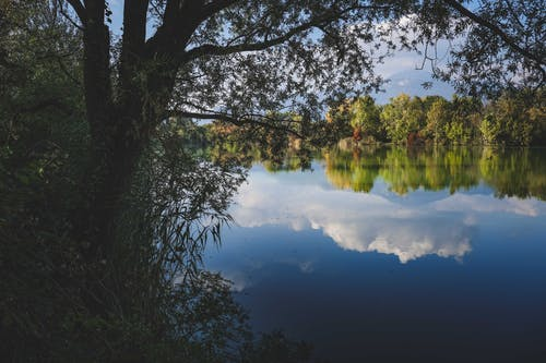 Picturesque scenery of lake reflecting clouds and trees