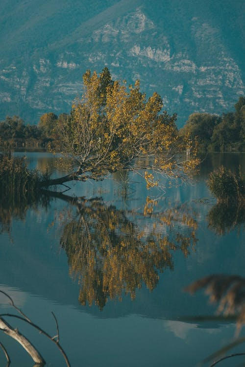 Picturesque landscape of tranquil lake reflecting rocky mountain slope and green bushes in  autumn day