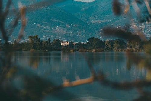 Picturesque landscape through tree branches of calm lake surrounded with green plants and forested mountains with small town on slopes
