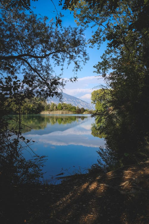 Summer landscape of mountain lake in forest