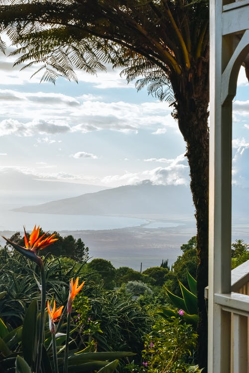 Terrace with view on tropical garden against sea with mountains