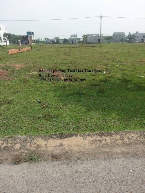 Free stock photo of 2 tỷ, 5 x 56 m = 310 m2, Bán đất tại phường thái hòa