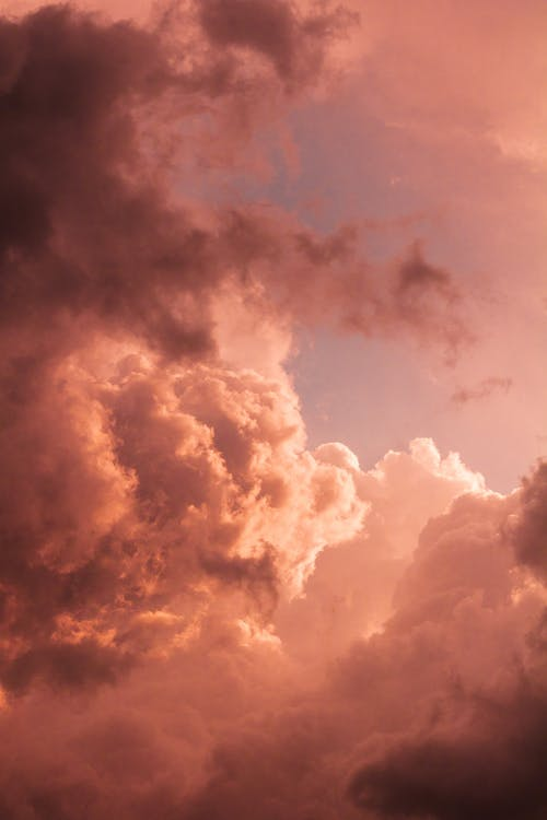 Wonderful pink clouds in sky at sunset