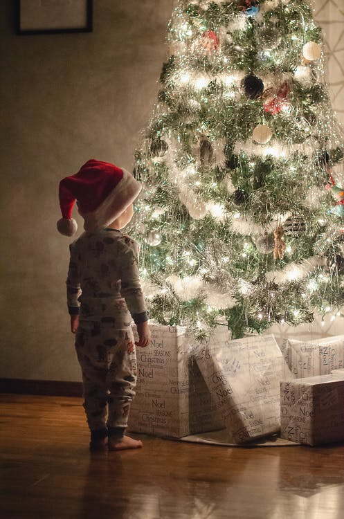Child in Red Hoodie Standing Beside Green Christmas Tree