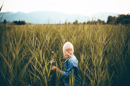 Person Wearing Blue Denim Jacket Looking Behind Grass Field