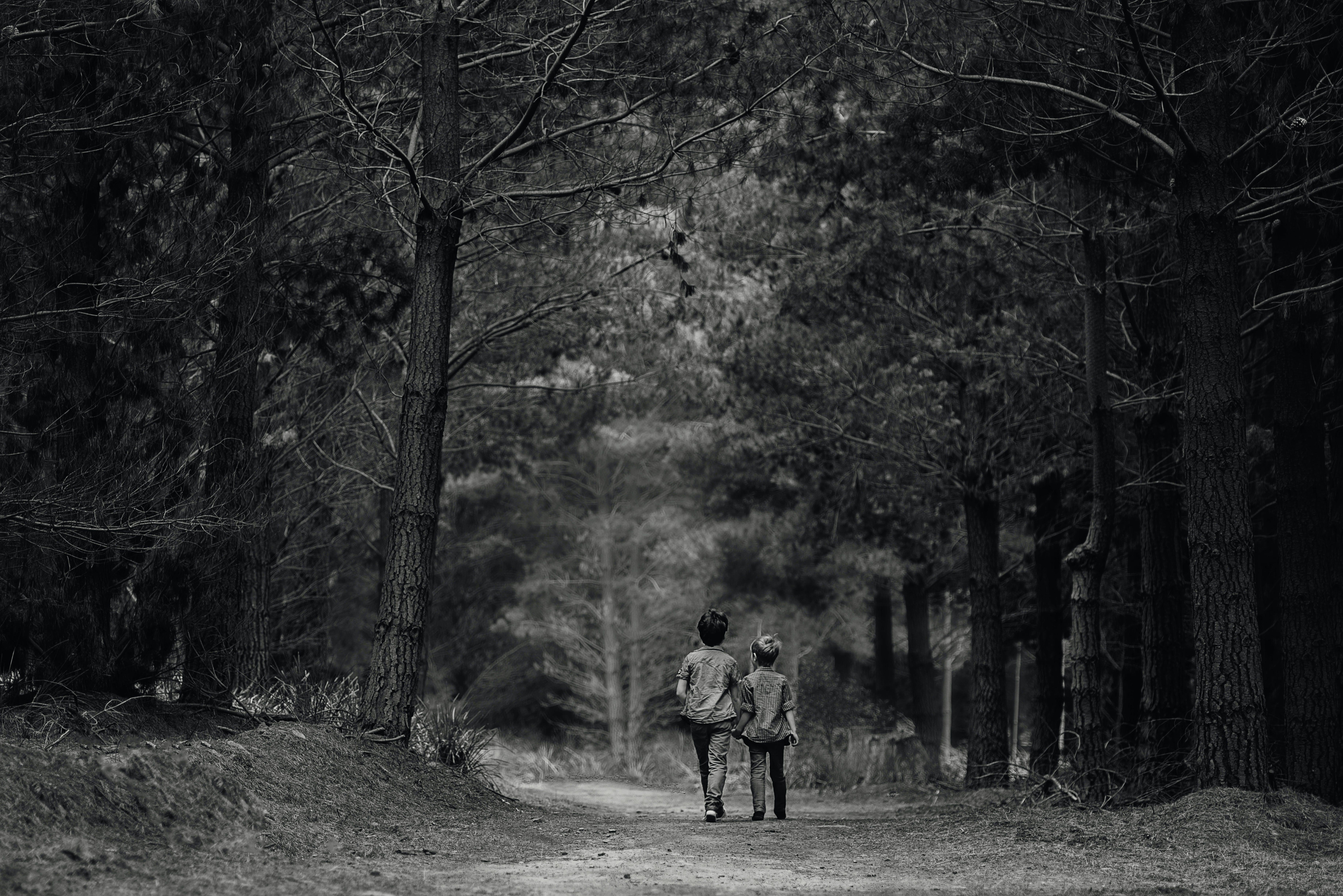 Two Children Walking at Pathway