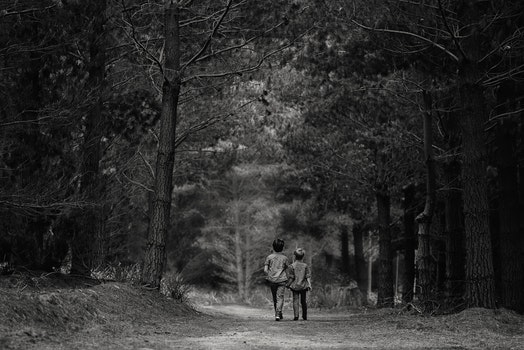 Free stock photo of black-and-white, road, people, forest