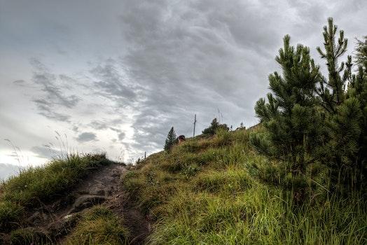 Kostenloses Stock Foto zu dämmerung, natur, himmel, hügel