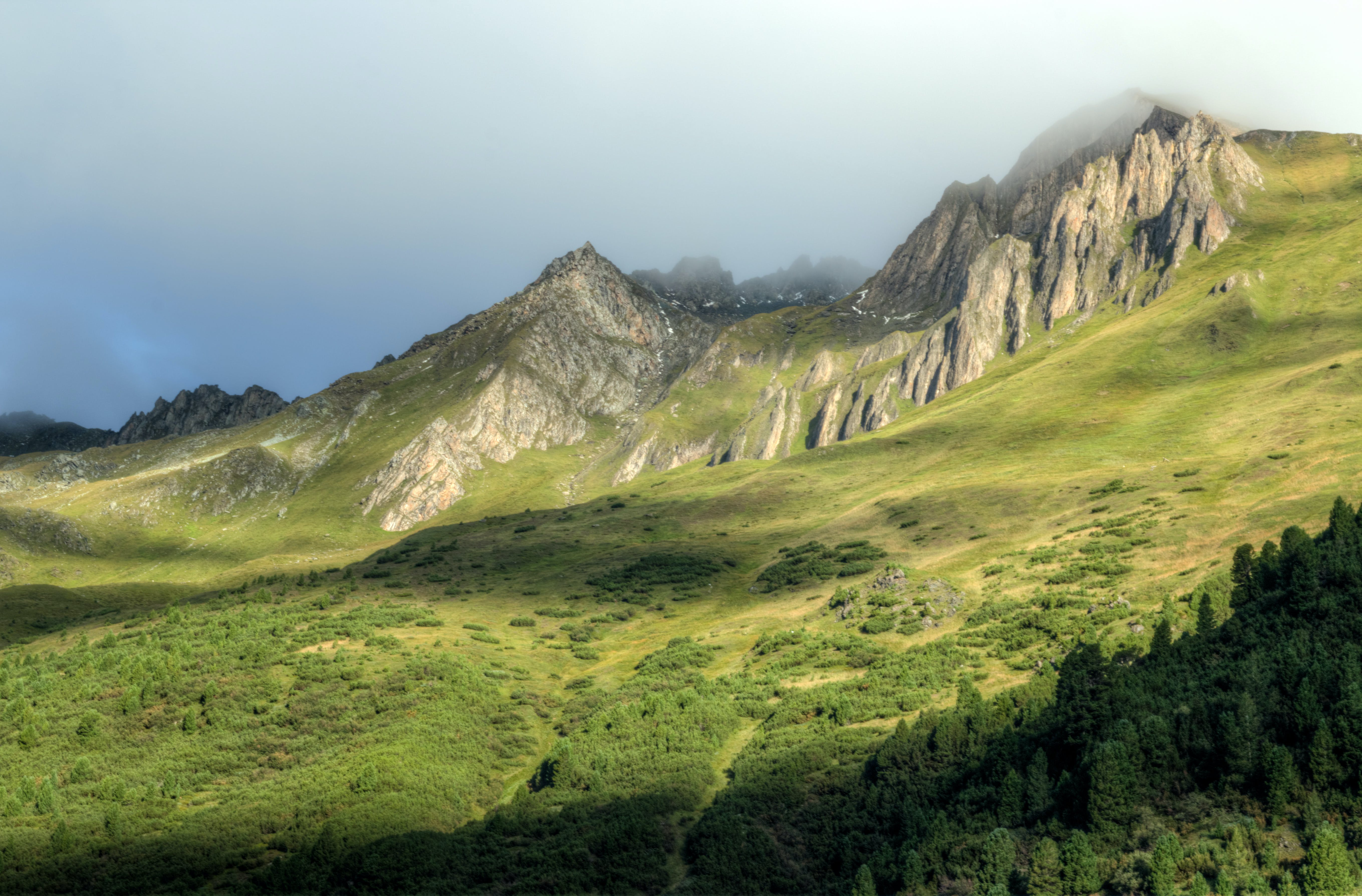 Ingyenes stockfotó Alpok, ég, erdő, fák témában
