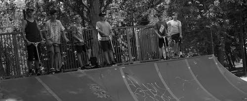 クルー, スクーター, 男の子の無料の写真素材