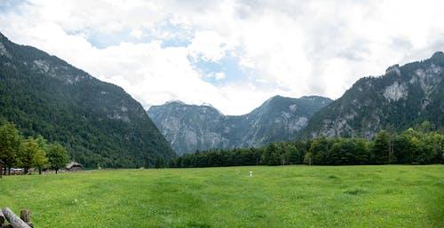 Free stock photo of panorama