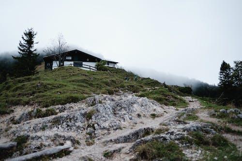 Black House on Green Grass Field Under White Sky