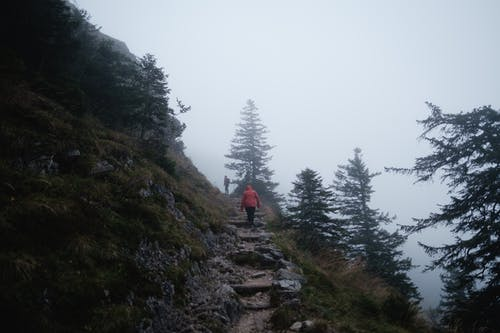 Person in Red Jacket Walking on Rocky Pathway