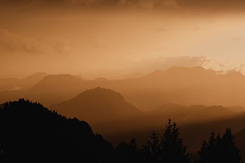 Silhouette of Trees and Mountains