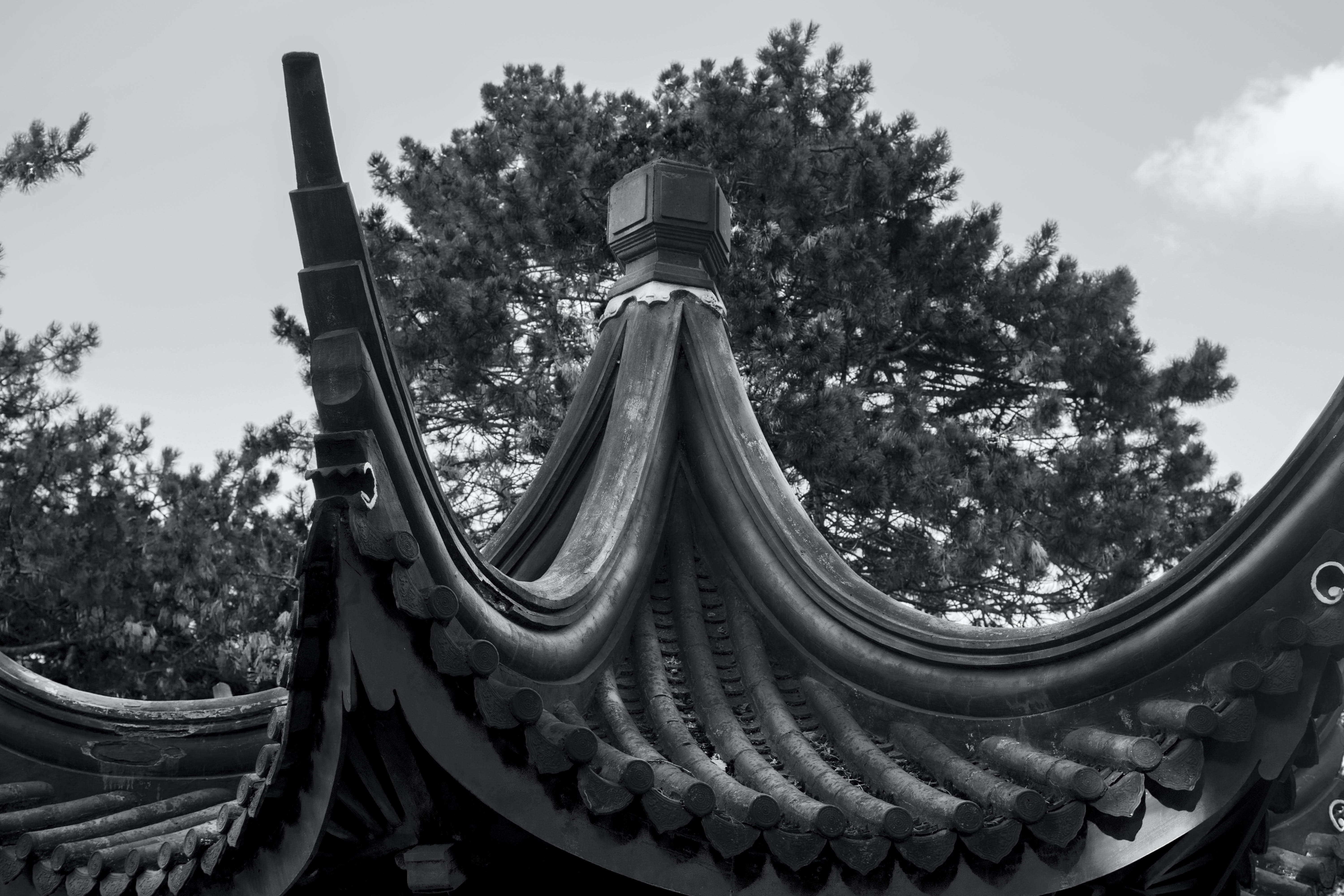 black and white, chinese architecture, roof