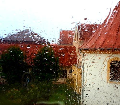 Ảnh lưu trữ miễn phí về giọt mưa, ngày mưa, nhiều mưa