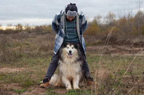 Man in Blue Checkered Jacket Standing Behind his Dog