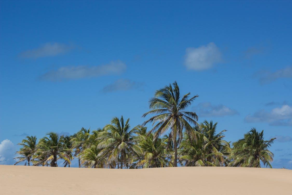 areia, blau, cel