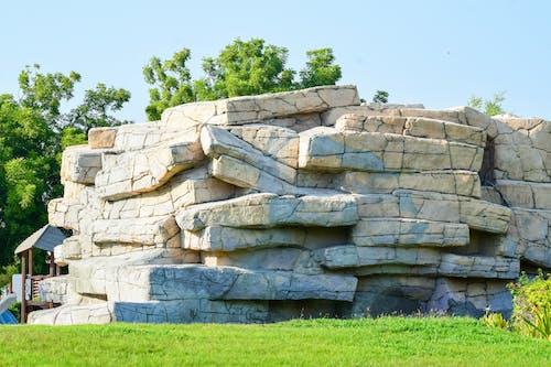 Free stock photo of grass, park, stone