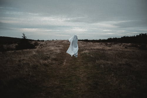 Anonymous person wearing white sheet in meadow with dried grass near forest under cloudy gloomy sky