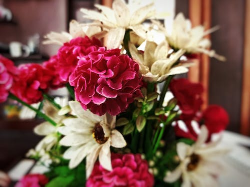 Free stock photo of artificial flowers, beautiful flower, bed of flowers