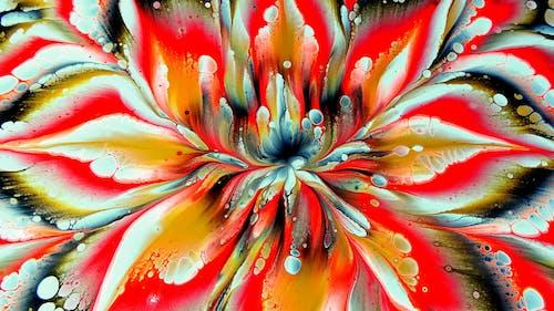 คลังภาพถ่ายฟรี ของ กลีบดอกไม้, การตกแต่ง, การระบายสี