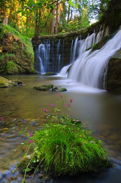 Fotos de stock gratuitas de agua, al aire libre, arroyo