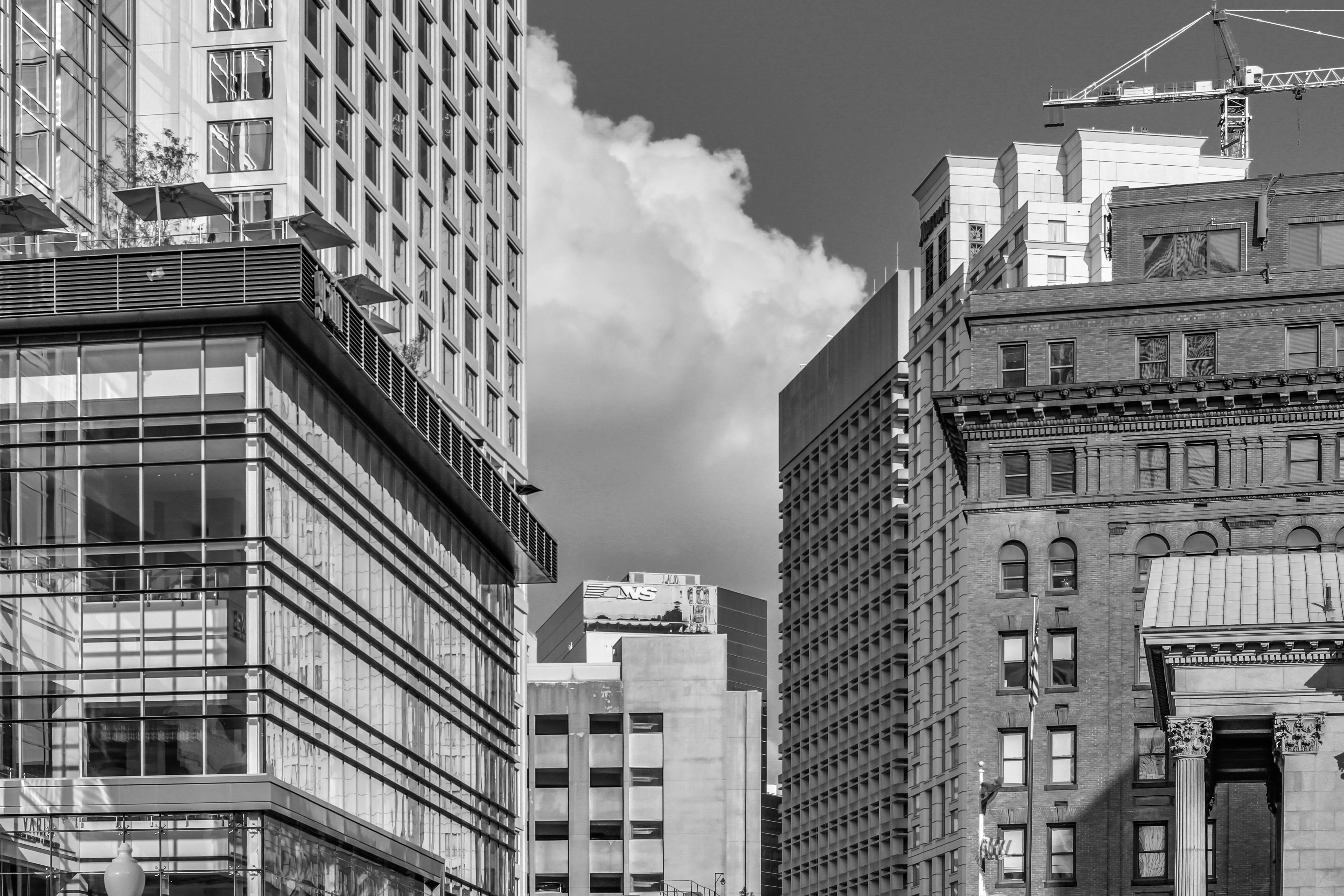 Free stock photo of b&w, black and white, business, city